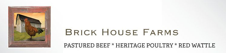 South Carolina Grass Fed Beef Heritage Pork